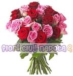 Trandafiri voiosi